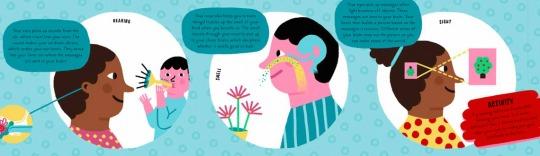 Ana Seixas Human Body News Feature Image