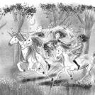 Evie and Sunshine Unicorn Academy internal illustration